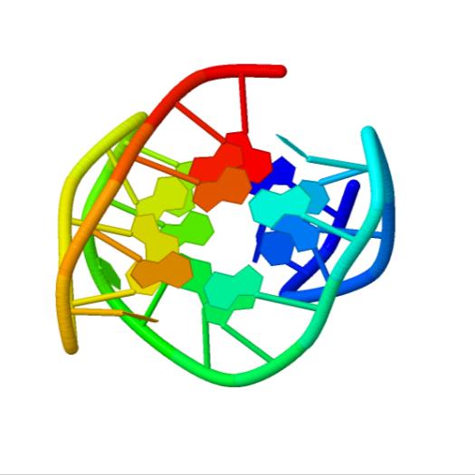 G4_ G quadruplexes