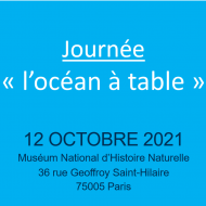journee_locean_a_table.png